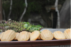 Bánh con sò vị quế mật ong